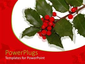 PowerPlugs: PowerPoint template with a number of leaves and berries with white background