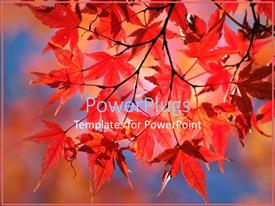 PowerPoint template displaying a number of leaves in the fall with colorful background
