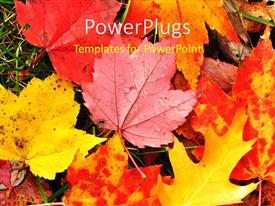 I love this theme having a number of leaves in the fall with place for text