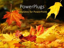 PowerPlugs: PowerPoint template with a number of leaves in the fall season