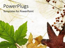 PowerPlugs: PowerPoint template with a number of leaves with white background