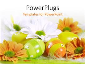 PowerPlugs: PowerPoint template with a number of orange flowers with white background