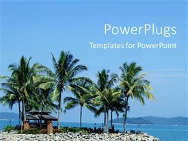 PowerPlugs: PowerPoint template with a number of palm trees on a beach