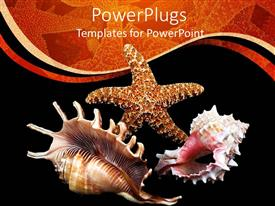 PowerPlugs: PowerPoint template with a number of sea creatures with black background
