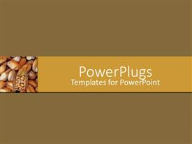 PowerPlugs: PowerPoint template with a number of seeds with brown background