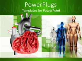 PowerPlugs: PowerPoint template with a number of skeletons and a heart