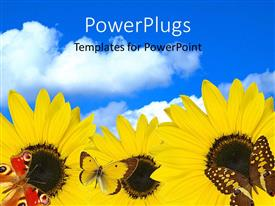 PowerPlugs: PowerPoint template with a number of sunflowers with clouds in the background
