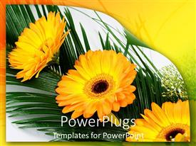 PowerPoint template displaying a number of sunflowers with leaves in the background