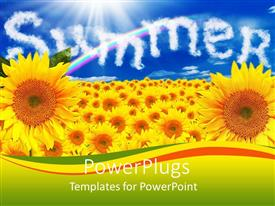 PowerPlugs: PowerPoint template with a number of sunflowers with the word summer in the background