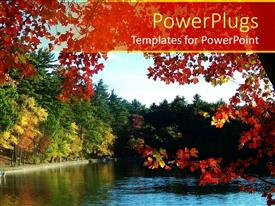 PowerPlugs: PowerPoint template with a number of trees along with a river