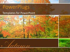 PowerPlugs: PowerPoint template with a number of trees during the fall