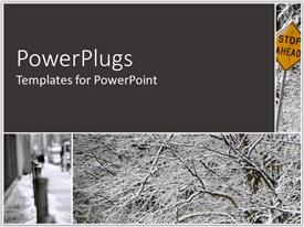PowerPlugs: PowerPoint template with a number of trees in the fall