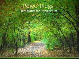PowerPlugs: PowerPoint template with a number of trees in a forest