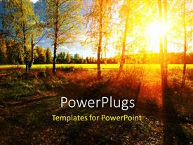 PowerPlugs: PowerPoint template with a number of trees with greenery in the background