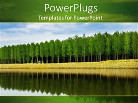 PowerPlugs: PowerPoint template with a number of trees with their reflection in the water