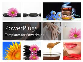 PowerPlugs: PowerPoint template with a number of various figures in different boxes