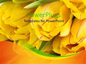 PowerPoint template displaying a number of yellow tulips with blurred background