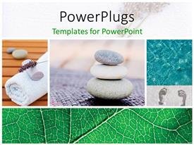 PowerPlugs: PowerPoint template with a number of zen stones with leaves in the background