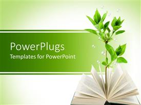 PowerPoint template displaying opened book with green plant growing out of the book's pages on light green background