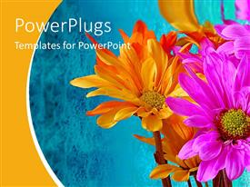 PowerPlugs: PowerPoint template with orange and pink flowers on abstract blue background
