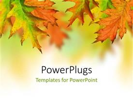PowerPlugs: PowerPoint template with orange, yellow, green autumn leaves with space for text
