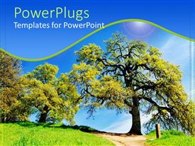 PowerPlugs: PowerPoint template with outdoor landscape with trees, path and grass under blue sky, nature