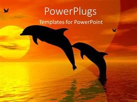 PowerPoint template displaying a pair of dolphins with sunset in the background