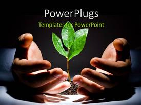 PowerPlugs: PowerPoint template with a pair of hands around a growing green plant