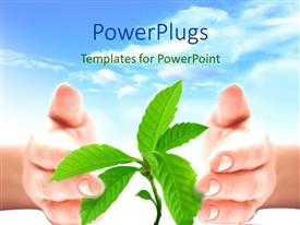 PowerPlugs: PowerPoint template with pair of hands cupping young plant against blue sky and clouds background