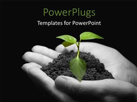PowerPoint template displaying a pair of hands holding the newly born plant with blackish background