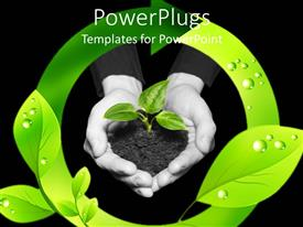 PowerPoint template displaying a pair of hands protecting a plant with green circle