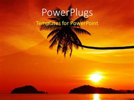 PowerPlugs: PowerPoint template with palm growing with sunset over tropical Island and reflection in water