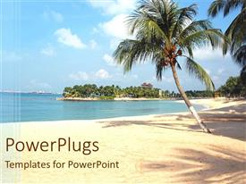 PowerPlugs: PowerPoint template with a palm tree on the beach with greenery
