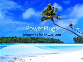 PowerPlugs: PowerPoint template with a palm tree with se ain the background