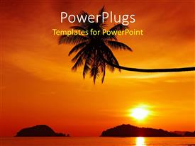 PowerPlugs: PowerPoint template with a palm tree with a sunset in the background