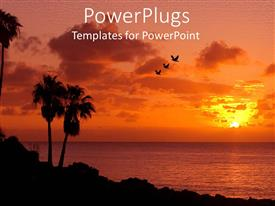 PowerPlugs: PowerPoint template with palm trees on beach at sunset with three birds flying across the sky