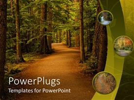 PowerPlugs: PowerPoint template with peaceful trail in the forest nature background