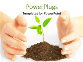 PowerPlugs: PowerPoint template with a person protecting a plant with white background