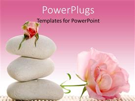 PowerPoint template displaying pink color roses with white stones