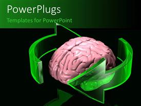 PowerPlugs: PowerPoint template with a pink colored human brain with two green circular arrows around it