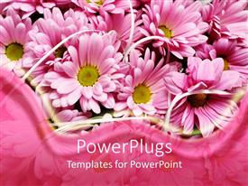 PowerPlugs: PowerPoint template with pink daisy flowers with pink wave border