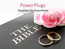 PowerPlugs: PowerPoint template with pink rose and wedding bands on Holy Bible for wedding vows