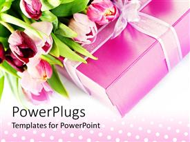 PowerPlugs: PowerPoint template with pink tulips on pink gift box with ribbon on polka dot background