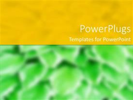 PowerPlugs: PowerPoint template with a plain green and yellow background with some blurry images