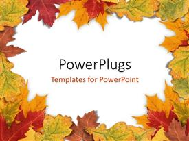 PowerPoint template displaying plain white background framed with autumn leaves