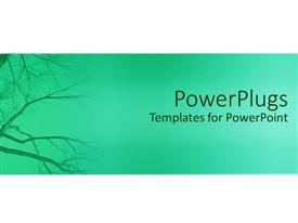 PowerPlugs: PowerPoint template with plane green hue background with dried empty tree branch