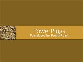 PowerPlugs: PowerPoint template with plane solid beige colored frame with unprocessed rice grains