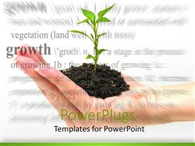 PowerPlugs: PowerPoint template with a plant in the palm of the hand