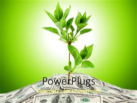 PowerPlugs: PowerPoint template with a plant with its roots inside the currency notes