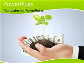 PowerPoint template displaying plant sprouting from earth in human hand over grey background